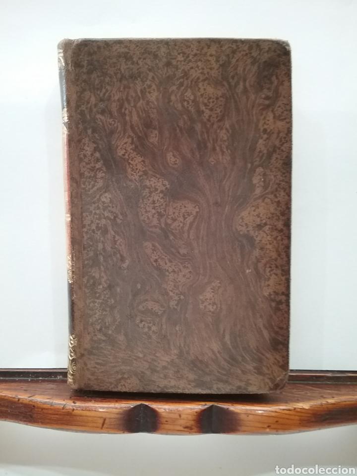 Libros antiguos: Libro La Gerusalemme liberata di Torcuato Tasso Tomó I. Ediciones stereotipa 1828. - Foto 5 - 151939189