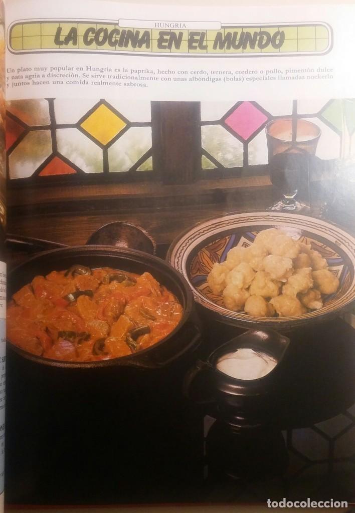 Libros antiguos: La cocina ideal. 8 Volúmenes - Foto 7 - 152058086