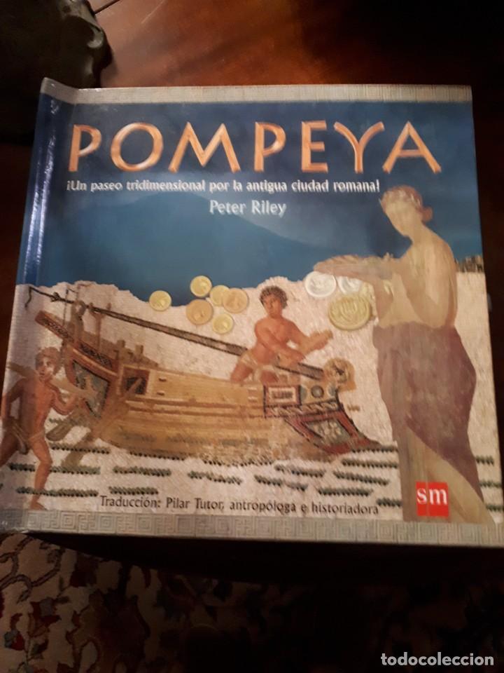 POMPEYA, LIBRO POP-UP (Libros Antiguos, Raros y Curiosos - Literatura Infantil y Juvenil - Otros)