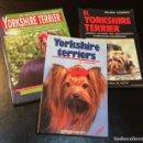 Libros antiguos: 3 LIBROS YORKSHIRE TERRIER. Lote 153906810