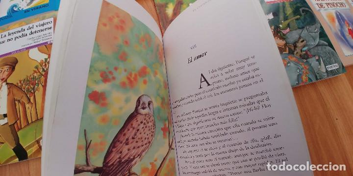 Libros antiguos: libros-26- variados-anaya everest -bruño -ala delta-tapa fina, - Foto 2 - 153989206