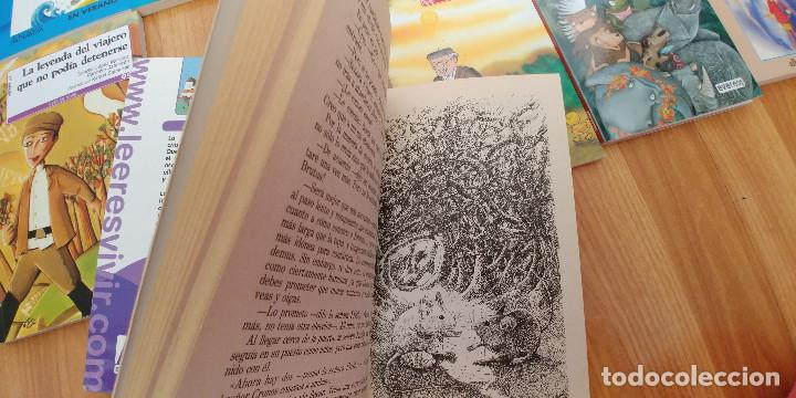 Libros antiguos: libros-26- variados-anaya everest -bruño -ala delta-tapa fina, - Foto 3 - 153989206
