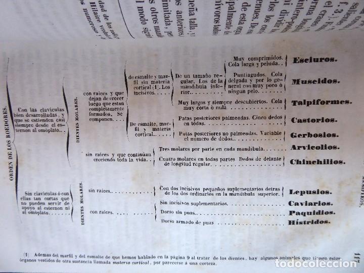 Libros antiguos: L-5269. ELEMENTOS DE HISTORIA NATURAL. MILNE EDWARDS Y AQUILES COMTE. 3 TOMOS. BARCELONA AÑO 1846. - Foto 5 - 154007630
