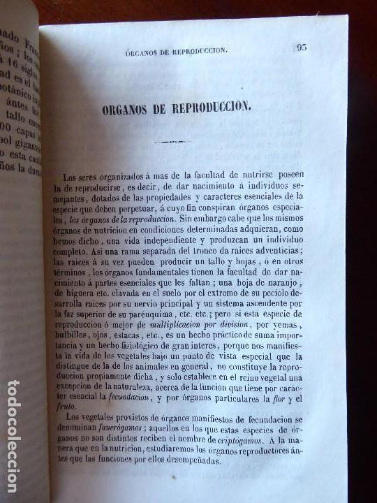 Libros antiguos: L-5269. ELEMENTOS DE HISTORIA NATURAL. MILNE EDWARDS Y AQUILES COMTE. 3 TOMOS. BARCELONA AÑO 1846. - Foto 13 - 154007630