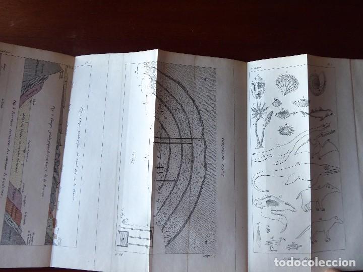 Libros antiguos: L-5269. ELEMENTOS DE HISTORIA NATURAL. MILNE EDWARDS Y AQUILES COMTE. 3 TOMOS. BARCELONA AÑO 1846. - Foto 25 - 154007630