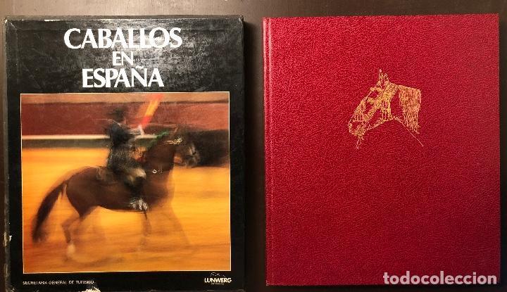 CABALLOS EN ESPAÑA(26€) (Libros Antiguos, Raros y Curiosos - Ciencias, Manuales y Oficios - Otros)