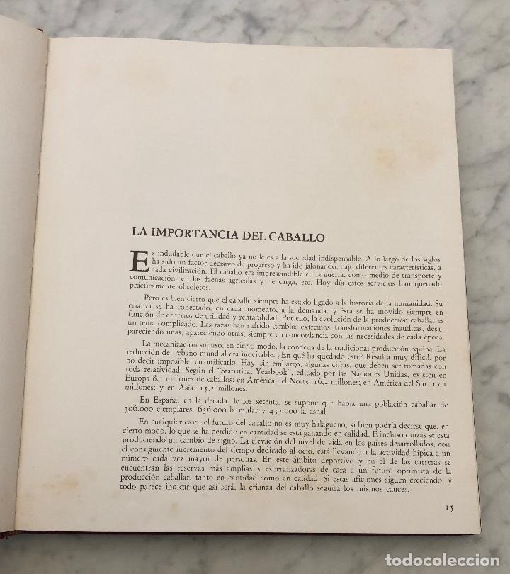 Libros antiguos: Caballos en España(26€) - Foto 3 - 154476874