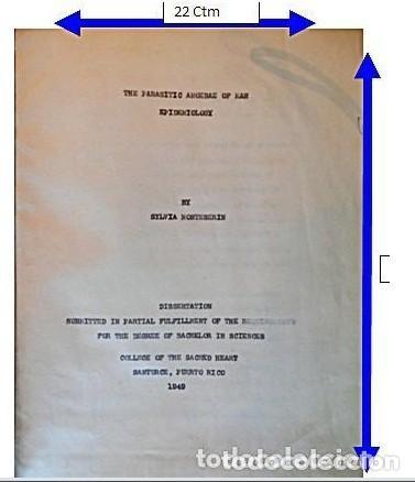 TESIS DOCTORAL EN PUERTO RICO : EL PARÁSITO AMOEBAE DEL HOMBRE. SYLVIA MONTESERÌN 1949. LIBRO UNICO (Libros Antiguos, Raros y Curiosos - Ciencias, Manuales y Oficios - Otros)