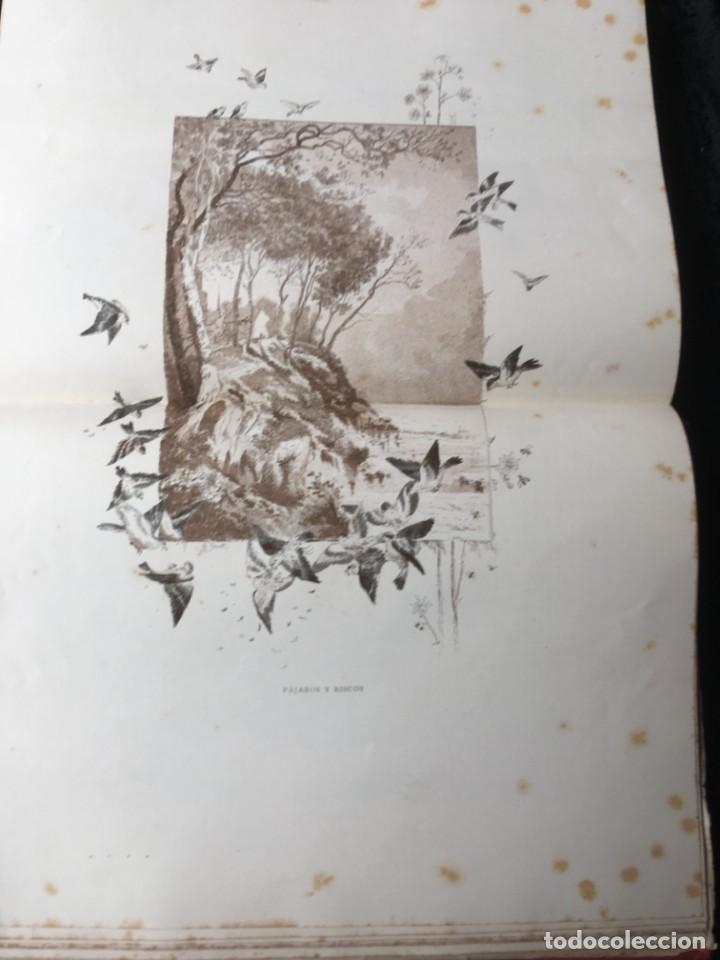 Libros antiguos: LA CAZA EN TODOS LOS PAISES Y A TRAVES DE LOS SIGLOS - CAMPWELL - 1886 - MUY ILUSTRADO - 4 TOMOS - Foto 7 - 155512942