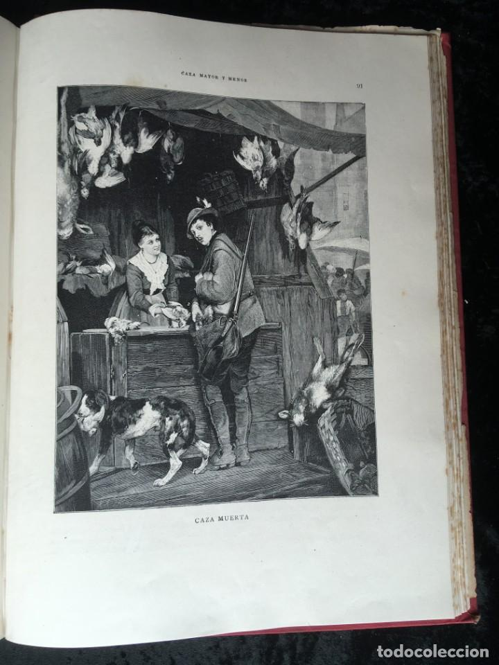 Libros antiguos: LA CAZA EN TODOS LOS PAISES Y A TRAVES DE LOS SIGLOS - CAMPWELL - 1886 - MUY ILUSTRADO - 4 TOMOS - Foto 9 - 155512942