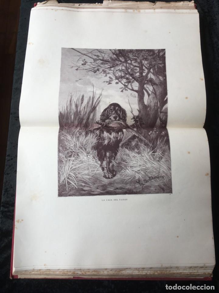 Libros antiguos: LA CAZA EN TODOS LOS PAISES Y A TRAVES DE LOS SIGLOS - CAMPWELL - 1886 - MUY ILUSTRADO - 4 TOMOS - Foto 15 - 155512942