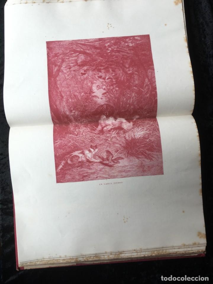 Libros antiguos: LA CAZA EN TODOS LOS PAISES Y A TRAVES DE LOS SIGLOS - CAMPWELL - 1886 - MUY ILUSTRADO - 4 TOMOS - Foto 16 - 155512942
