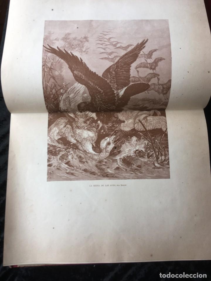 Libros antiguos: LA CAZA EN TODOS LOS PAISES Y A TRAVES DE LOS SIGLOS - CAMPWELL - 1886 - MUY ILUSTRADO - 4 TOMOS - Foto 22 - 155512942