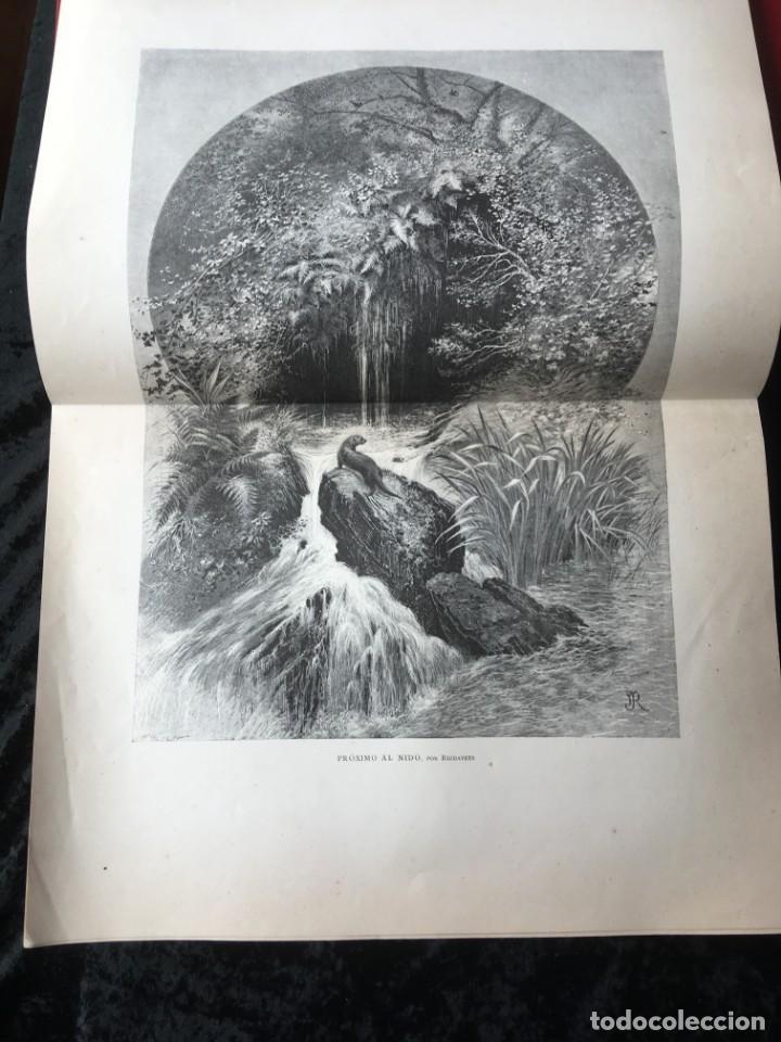 Libros antiguos: LA CAZA EN TODOS LOS PAISES Y A TRAVES DE LOS SIGLOS - CAMPWELL - 1886 - MUY ILUSTRADO - 4 TOMOS - Foto 24 - 155512942