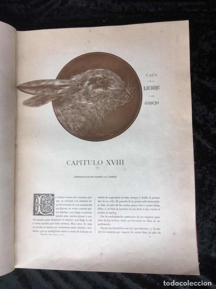 Libros antiguos: LA CAZA EN TODOS LOS PAISES Y A TRAVES DE LOS SIGLOS - CAMPWELL - 1886 - MUY ILUSTRADO - 4 TOMOS - Foto 25 - 155512942