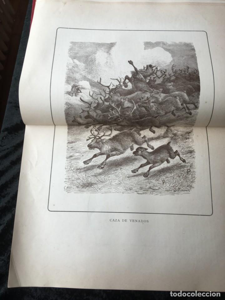 Libros antiguos: LA CAZA EN TODOS LOS PAISES Y A TRAVES DE LOS SIGLOS - CAMPWELL - 1886 - MUY ILUSTRADO - 4 TOMOS - Foto 27 - 155512942