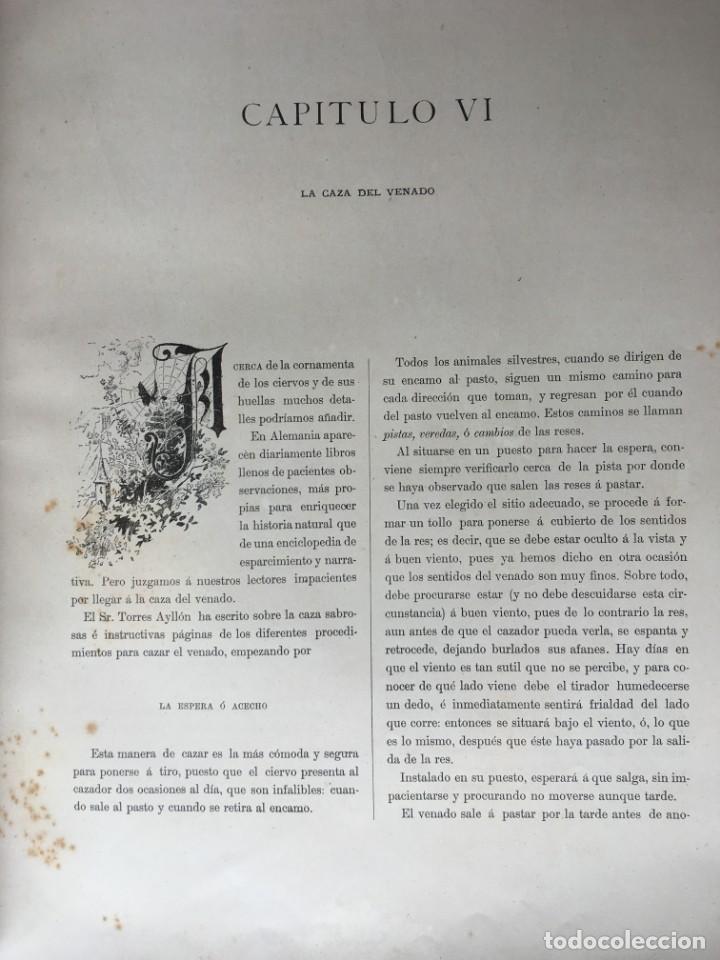 Libros antiguos: LA CAZA EN TODOS LOS PAISES Y A TRAVES DE LOS SIGLOS - CAMPWELL - 1886 - MUY ILUSTRADO - 4 TOMOS - Foto 29 - 155512942