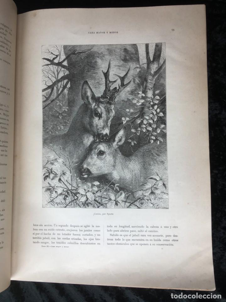 Libros antiguos: LA CAZA EN TODOS LOS PAISES Y A TRAVES DE LOS SIGLOS - CAMPWELL - 1886 - MUY ILUSTRADO - 4 TOMOS - Foto 30 - 155512942