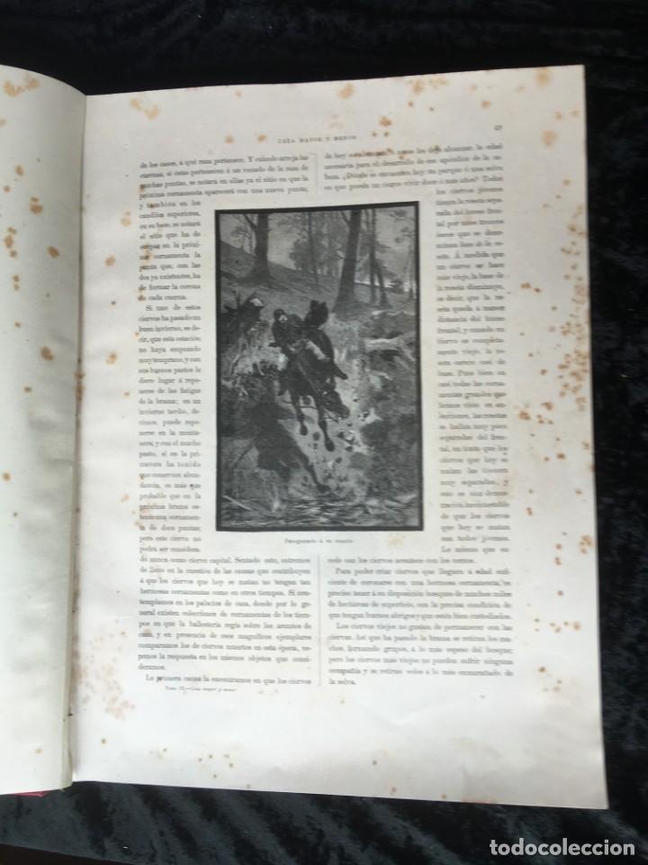 Libros antiguos: LA CAZA EN TODOS LOS PAISES Y A TRAVES DE LOS SIGLOS - CAMPWELL - 1886 - MUY ILUSTRADO - 4 TOMOS - Foto 31 - 155512942