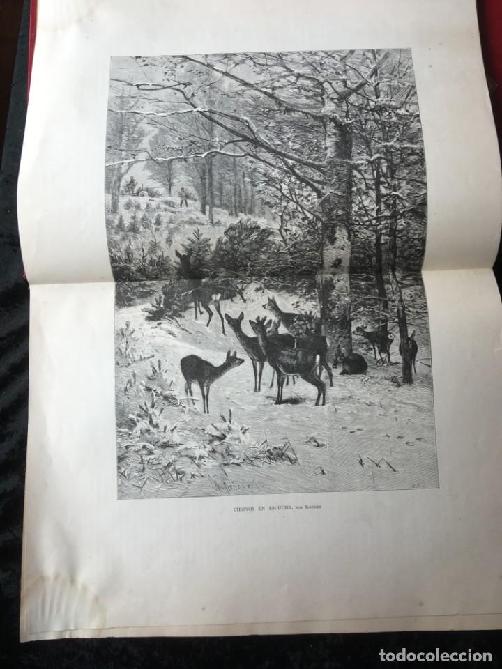 Libros antiguos: LA CAZA EN TODOS LOS PAISES Y A TRAVES DE LOS SIGLOS - CAMPWELL - 1886 - MUY ILUSTRADO - 4 TOMOS - Foto 32 - 155512942