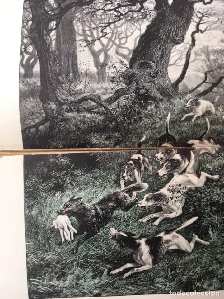 Libros antiguos: LA CAZA EN TODOS LOS PAISES Y A TRAVES DE LOS SIGLOS - CAMPWELL - 1886 - MUY ILUSTRADO - 4 TOMOS - Foto 46 - 155512942