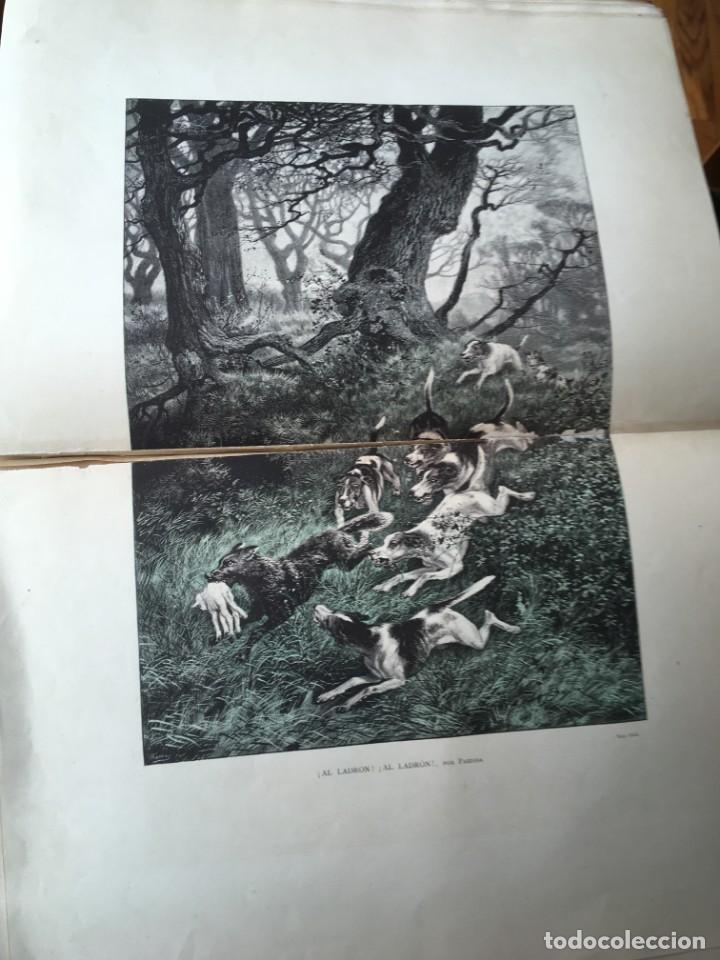 Libros antiguos: LA CAZA EN TODOS LOS PAISES Y A TRAVES DE LOS SIGLOS - CAMPWELL - 1886 - MUY ILUSTRADO - 4 TOMOS - Foto 48 - 155512942