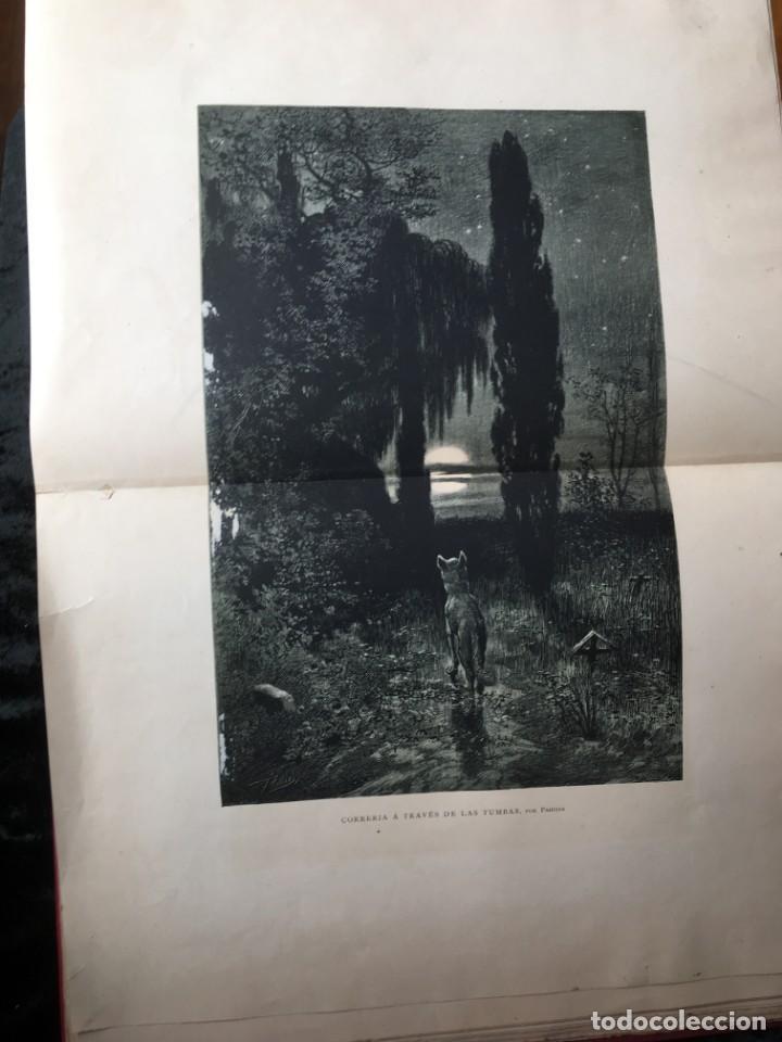 Libros antiguos: LA CAZA EN TODOS LOS PAISES Y A TRAVES DE LOS SIGLOS - CAMPWELL - 1886 - MUY ILUSTRADO - 4 TOMOS - Foto 49 - 155512942