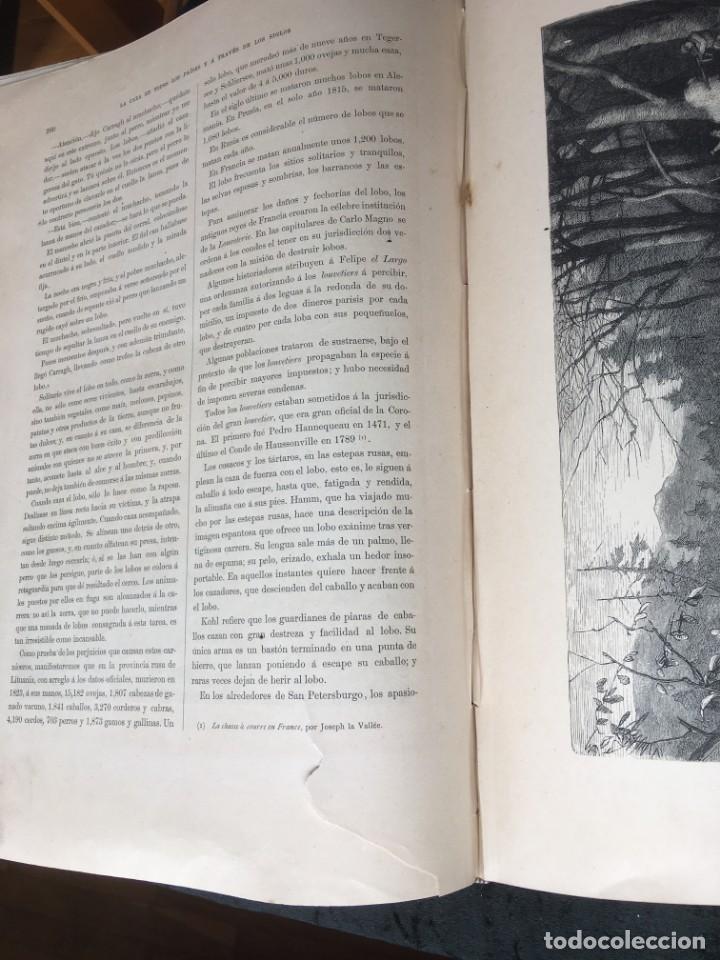 Libros antiguos: LA CAZA EN TODOS LOS PAISES Y A TRAVES DE LOS SIGLOS - CAMPWELL - 1886 - MUY ILUSTRADO - 4 TOMOS - Foto 50 - 155512942