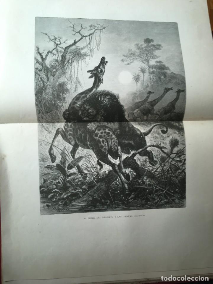 Libros antiguos: LA CAZA EN TODOS LOS PAISES Y A TRAVES DE LOS SIGLOS - CAMPWELL - 1886 - MUY ILUSTRADO - 4 TOMOS - Foto 52 - 155512942