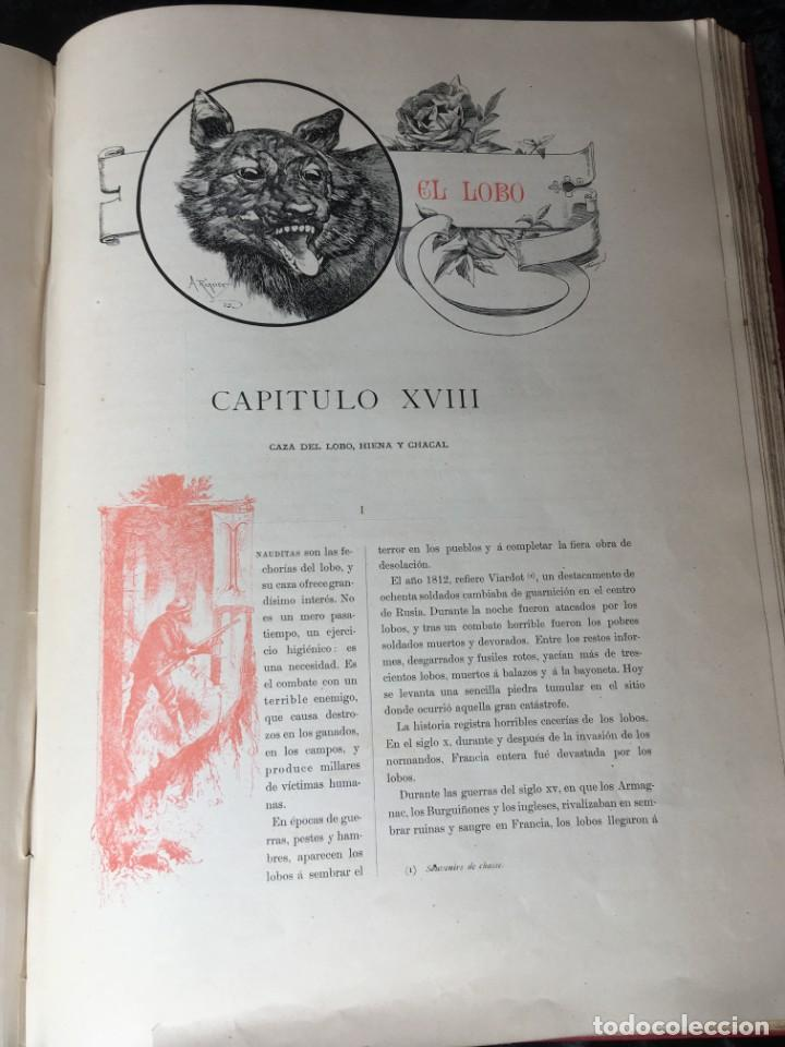 Libros antiguos: LA CAZA EN TODOS LOS PAISES Y A TRAVES DE LOS SIGLOS - CAMPWELL - 1886 - MUY ILUSTRADO - 4 TOMOS - Foto 53 - 155512942