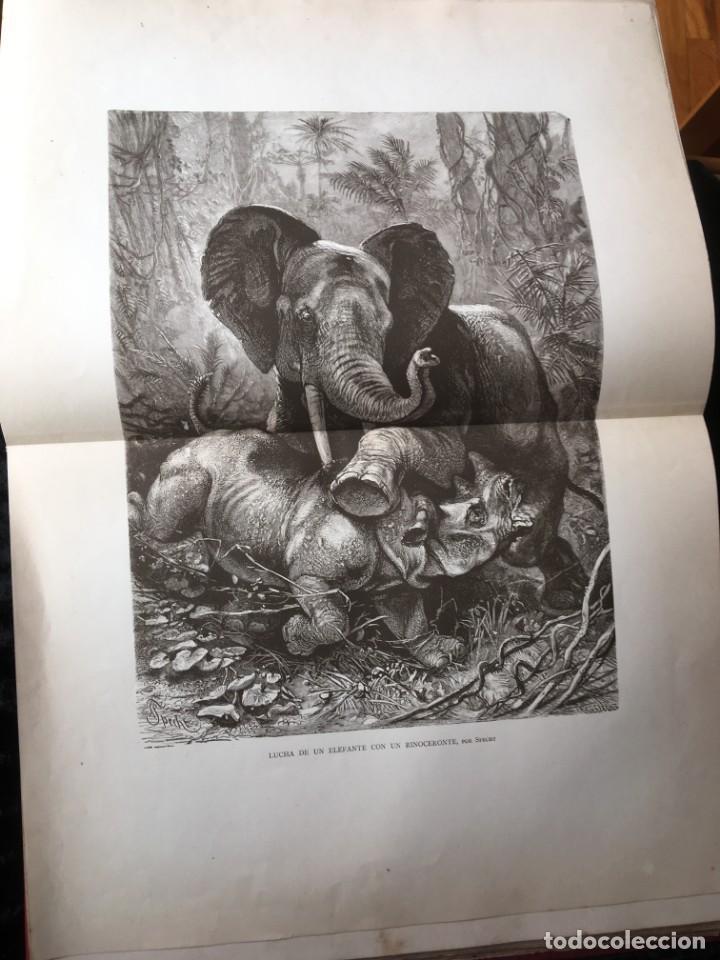 Libros antiguos: LA CAZA EN TODOS LOS PAISES Y A TRAVES DE LOS SIGLOS - CAMPWELL - 1886 - MUY ILUSTRADO - 4 TOMOS - Foto 61 - 155512942