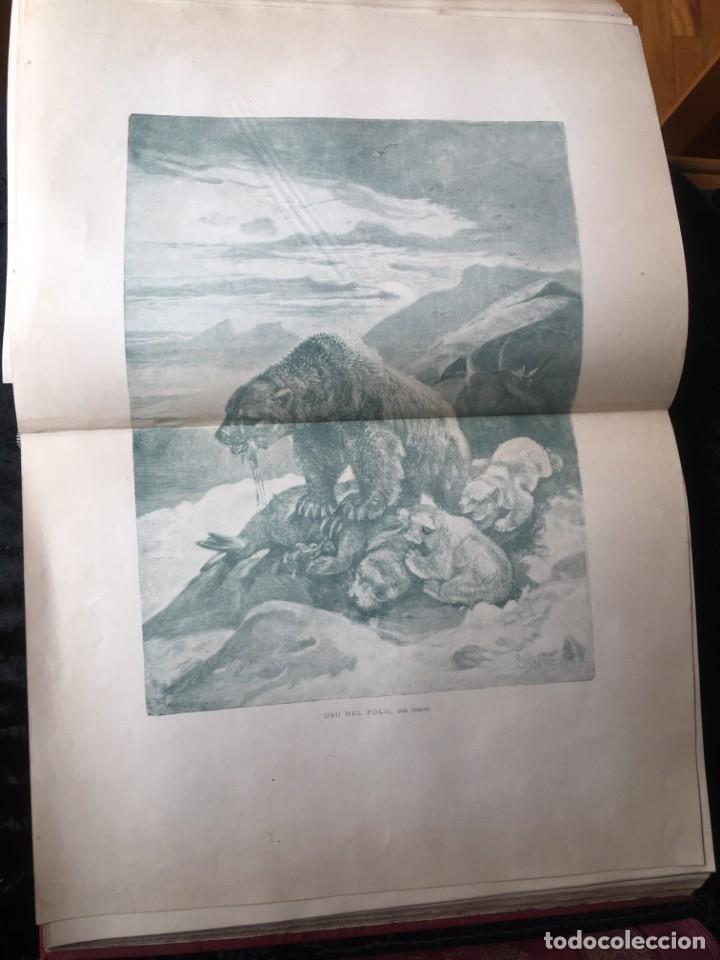 Libros antiguos: LA CAZA EN TODOS LOS PAISES Y A TRAVES DE LOS SIGLOS - CAMPWELL - 1886 - MUY ILUSTRADO - 4 TOMOS - Foto 63 - 155512942