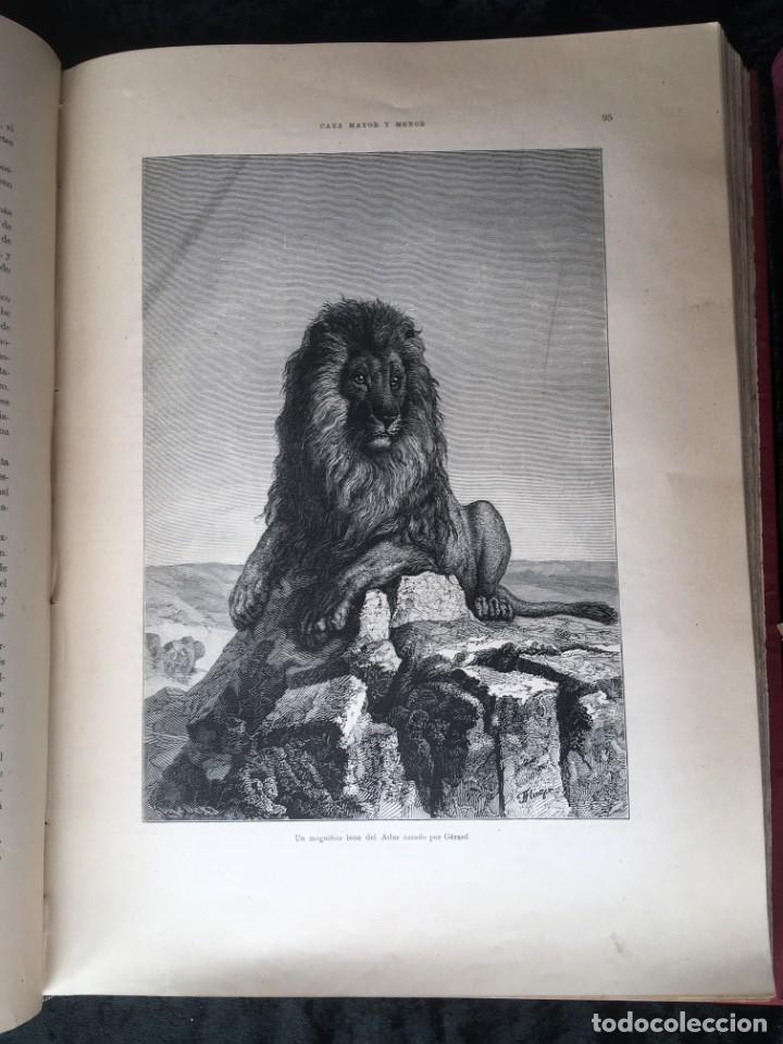 Libros antiguos: LA CAZA EN TODOS LOS PAISES Y A TRAVES DE LOS SIGLOS - CAMPWELL - 1886 - MUY ILUSTRADO - 4 TOMOS - Foto 66 - 155512942