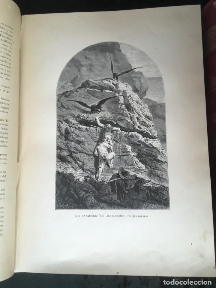 Libros antiguos: LA CAZA EN TODOS LOS PAISES Y A TRAVES DE LOS SIGLOS - CAMPWELL - 1886 - MUY ILUSTRADO - 4 TOMOS - Foto 71 - 155512942