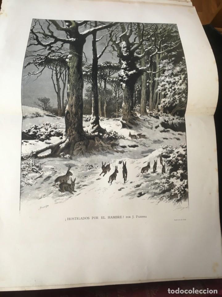 Libros antiguos: LA CAZA EN TODOS LOS PAISES Y A TRAVES DE LOS SIGLOS - CAMPWELL - 1886 - MUY ILUSTRADO - 4 TOMOS - Foto 72 - 155512942