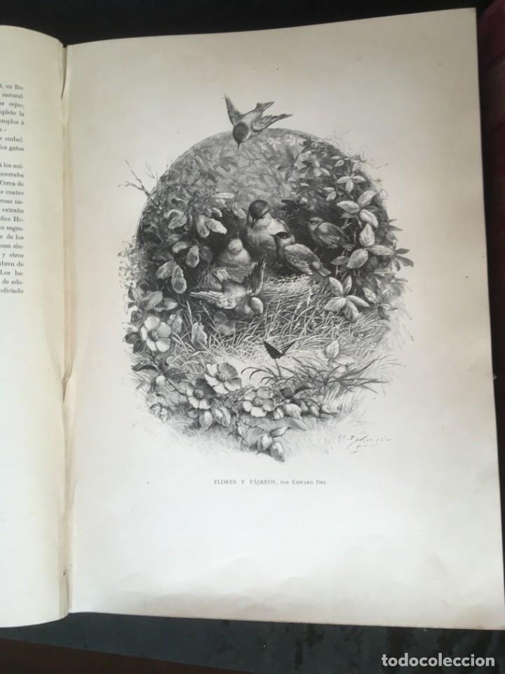 Libros antiguos: LA CAZA EN TODOS LOS PAISES Y A TRAVES DE LOS SIGLOS - CAMPWELL - 1886 - MUY ILUSTRADO - 4 TOMOS - Foto 73 - 155512942