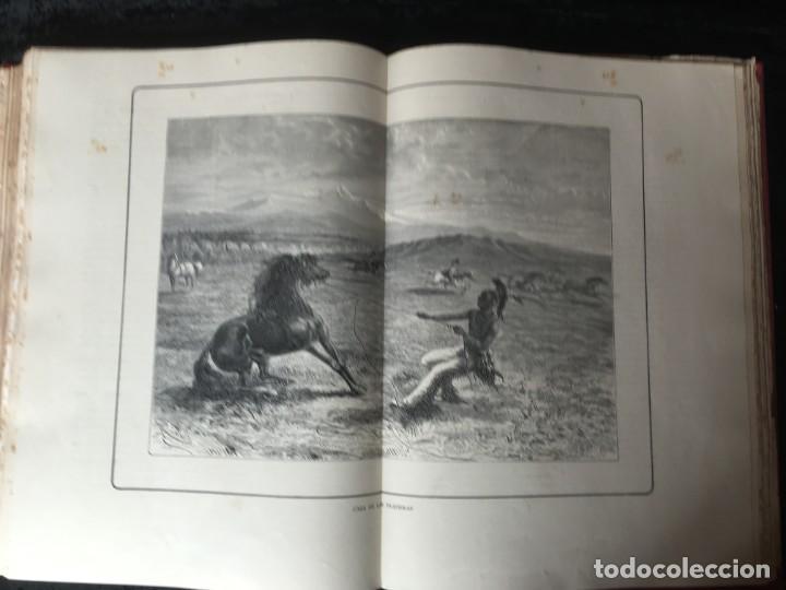 Libros antiguos: LA CAZA EN TODOS LOS PAISES Y A TRAVES DE LOS SIGLOS - CAMPWELL - 1886 - MUY ILUSTRADO - 4 TOMOS - Foto 86 - 155512942