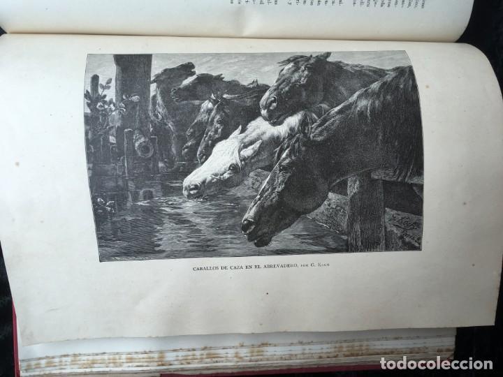 Libros antiguos: LA CAZA EN TODOS LOS PAISES Y A TRAVES DE LOS SIGLOS - CAMPWELL - 1886 - MUY ILUSTRADO - 4 TOMOS - Foto 93 - 155512942