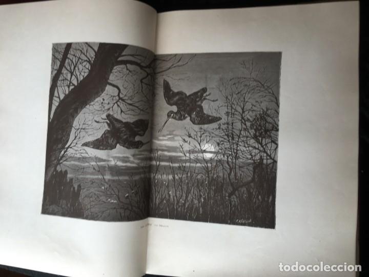 Libros antiguos: LA CAZA EN TODOS LOS PAISES Y A TRAVES DE LOS SIGLOS - CAMPWELL - 1886 - MUY ILUSTRADO - 4 TOMOS - Foto 96 - 155512942