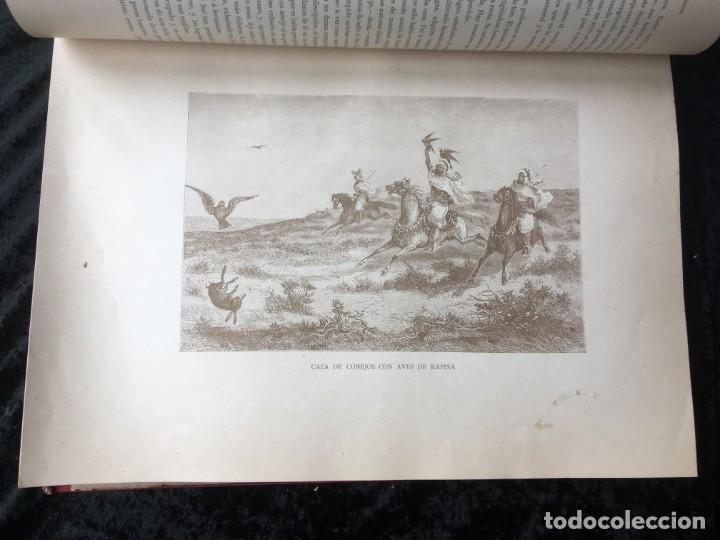 Libros antiguos: LA CAZA EN TODOS LOS PAISES Y A TRAVES DE LOS SIGLOS - CAMPWELL - 1886 - MUY ILUSTRADO - 4 TOMOS - Foto 98 - 155512942