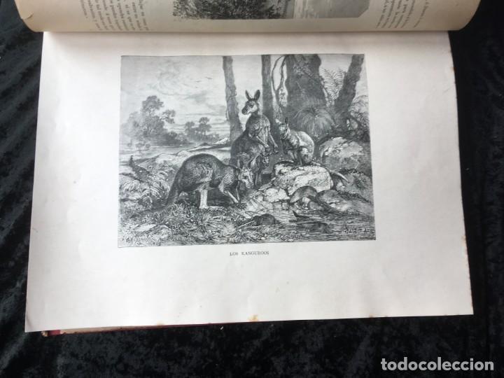 Libros antiguos: LA CAZA EN TODOS LOS PAISES Y A TRAVES DE LOS SIGLOS - CAMPWELL - 1886 - MUY ILUSTRADO - 4 TOMOS - Foto 100 - 155512942