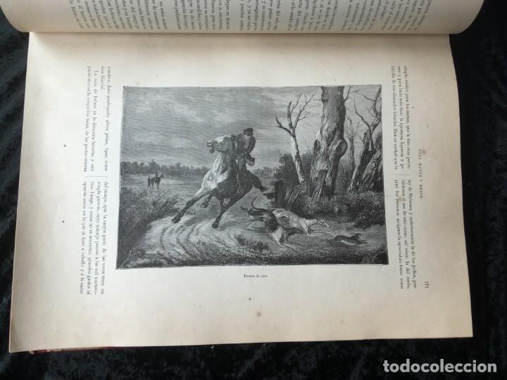 Libros antiguos: LA CAZA EN TODOS LOS PAISES Y A TRAVES DE LOS SIGLOS - CAMPWELL - 1886 - MUY ILUSTRADO - 4 TOMOS - Foto 101 - 155512942
