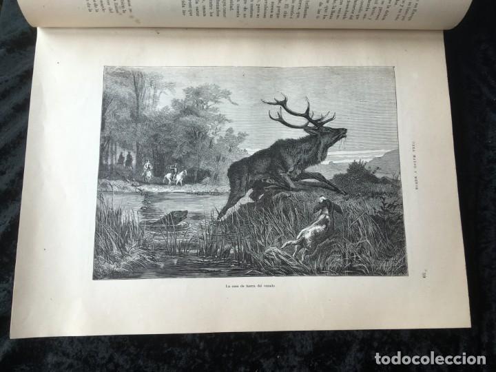 Libros antiguos: LA CAZA EN TODOS LOS PAISES Y A TRAVES DE LOS SIGLOS - CAMPWELL - 1886 - MUY ILUSTRADO - 4 TOMOS - Foto 112 - 155512942