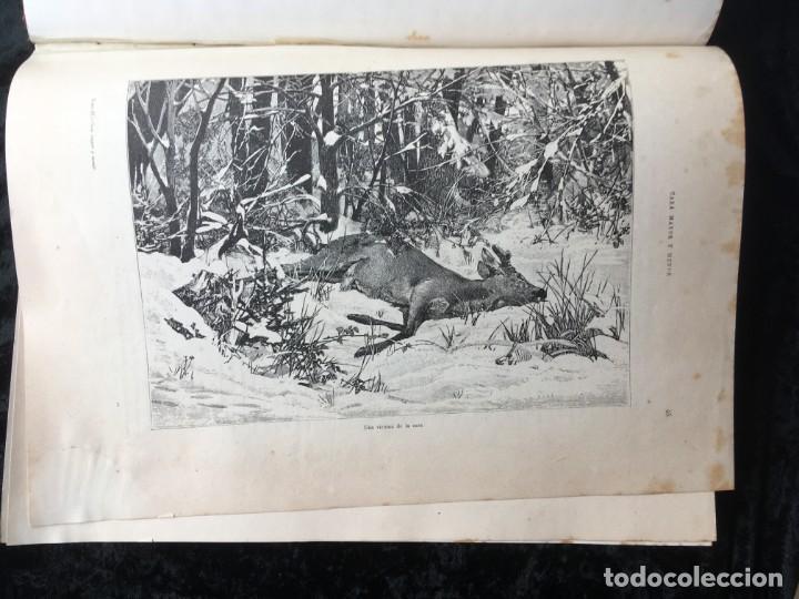 Libros antiguos: LA CAZA EN TODOS LOS PAISES Y A TRAVES DE LOS SIGLOS - CAMPWELL - 1886 - MUY ILUSTRADO - 4 TOMOS - Foto 115 - 155512942