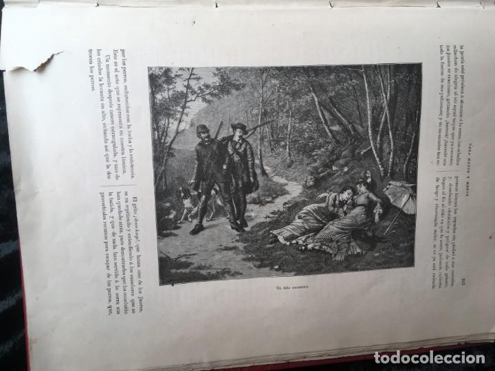 Libros antiguos: LA CAZA EN TODOS LOS PAISES Y A TRAVES DE LOS SIGLOS - CAMPWELL - 1886 - MUY ILUSTRADO - 4 TOMOS - Foto 124 - 155512942