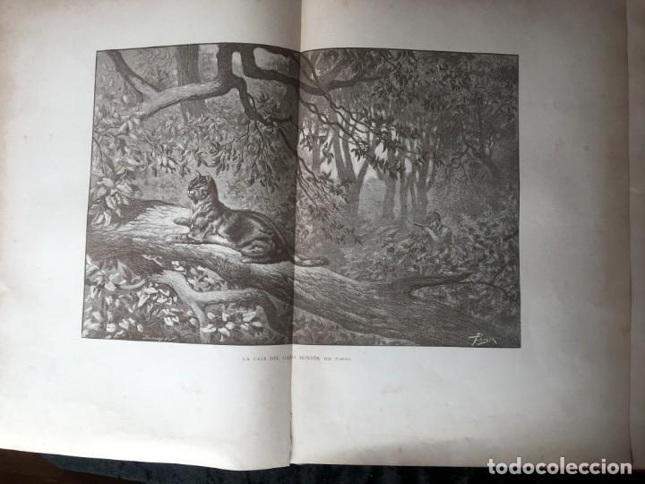 Libros antiguos: LA CAZA EN TODOS LOS PAISES Y A TRAVES DE LOS SIGLOS - CAMPWELL - 1886 - MUY ILUSTRADO - 4 TOMOS - Foto 129 - 155512942