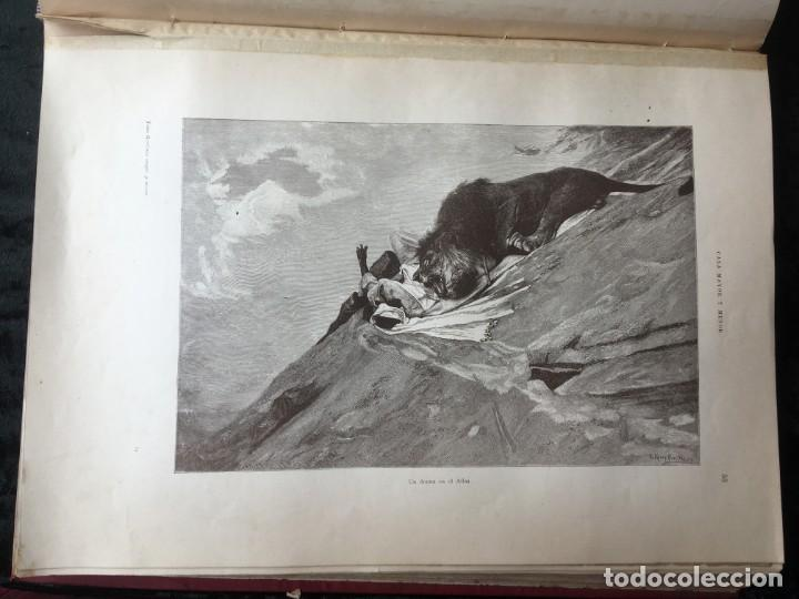Libros antiguos: LA CAZA EN TODOS LOS PAISES Y A TRAVES DE LOS SIGLOS - CAMPWELL - 1886 - MUY ILUSTRADO - 4 TOMOS - Foto 133 - 155512942