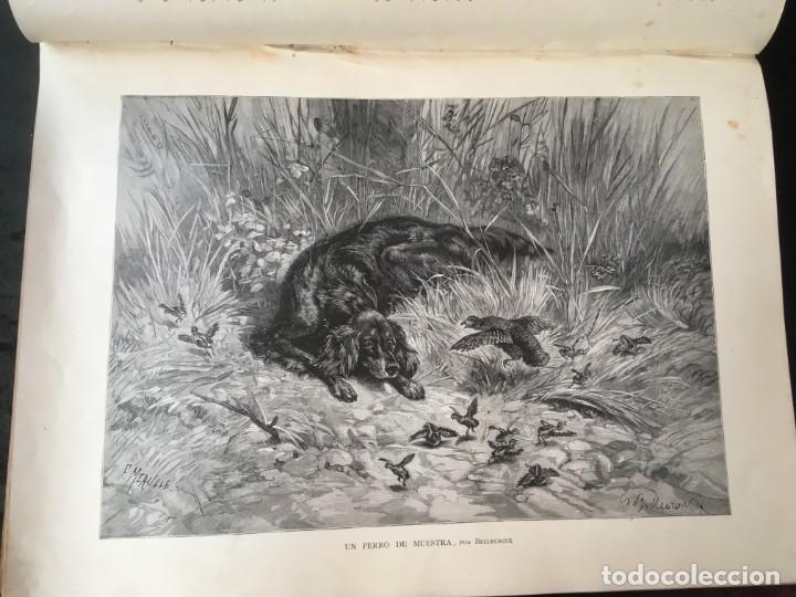 Libros antiguos: LA CAZA EN TODOS LOS PAISES Y A TRAVES DE LOS SIGLOS - CAMPWELL - 1886 - MUY ILUSTRADO - 4 TOMOS - Foto 138 - 155512942