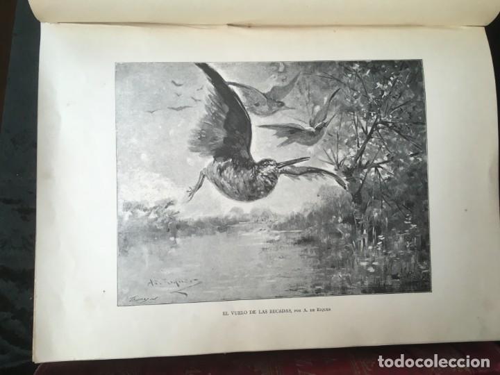Libros antiguos: LA CAZA EN TODOS LOS PAISES Y A TRAVES DE LOS SIGLOS - CAMPWELL - 1886 - MUY ILUSTRADO - 4 TOMOS - Foto 139 - 155512942