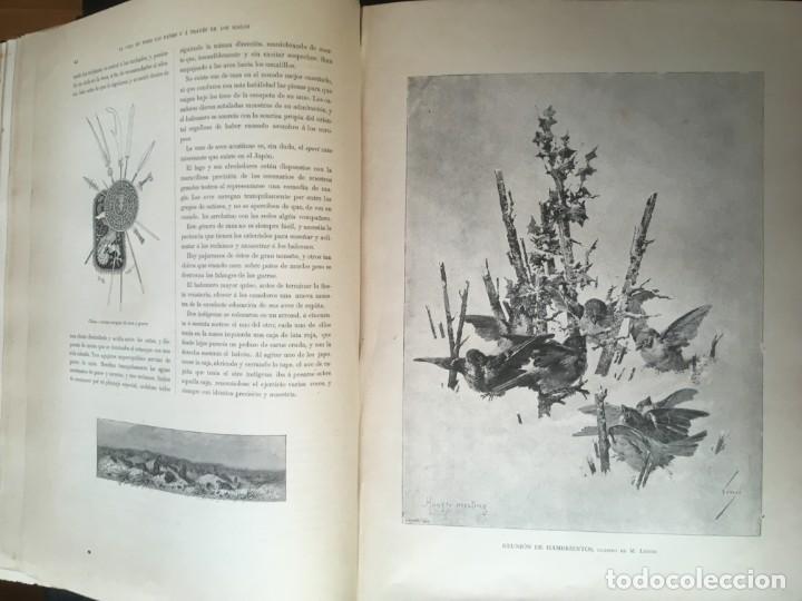 Libros antiguos: LA CAZA EN TODOS LOS PAISES Y A TRAVES DE LOS SIGLOS - CAMPWELL - 1886 - MUY ILUSTRADO - 4 TOMOS - Foto 140 - 155512942